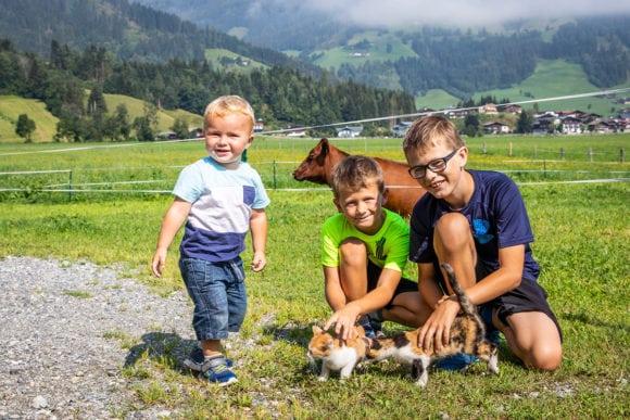 Tiere am Fingerhof in Flachau, Bauernhofurlaub im Salzburger Land